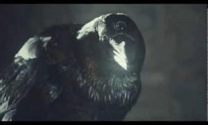 Game Of Thrones Season 3: Three-Eyed Raven Tease